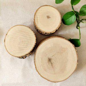 تنه درخت چوب تزئینی